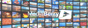 Intégrateurs MediaBerry NOUS